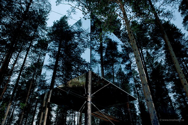 Hotel in Tree